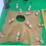 peanut shell ant craft idea
