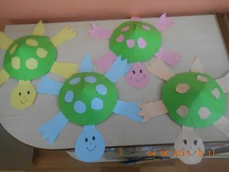 cone shaped turtle craft