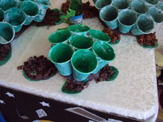 paper cup turtle craft