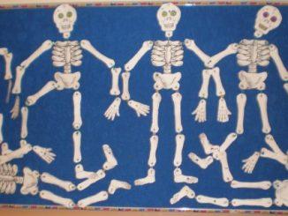 skeleton craft idea for kids
