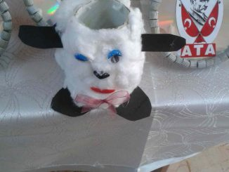 toilet-paper-roll-sheep-craft-idea