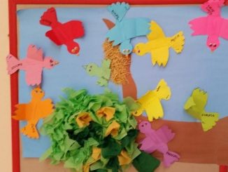 bird bulletin board idea for preschoolers