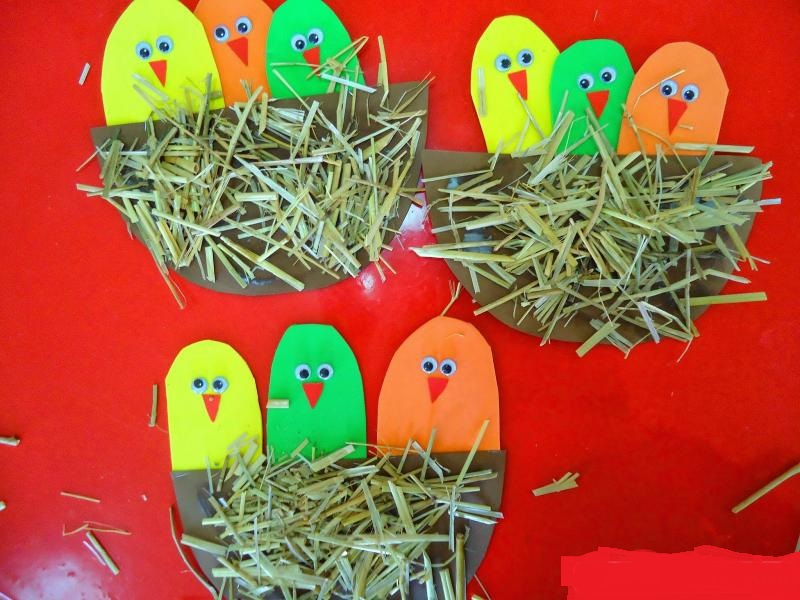 bird-nest-craft-idea