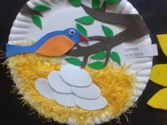 paper-plate-bird-nest-craft-idea
