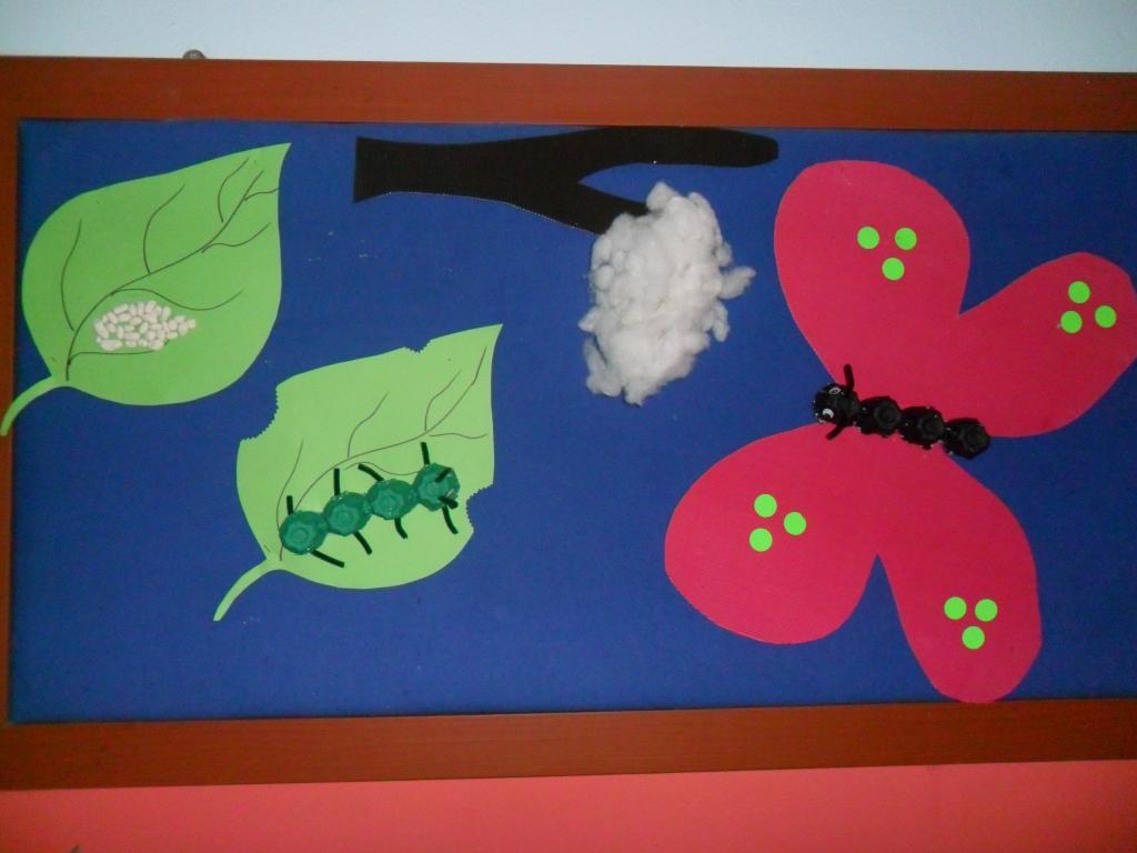 Life of cycle butterfly craft idea - Preschoolplanet