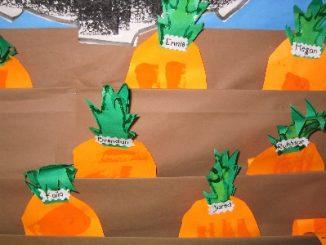 carrot_craft