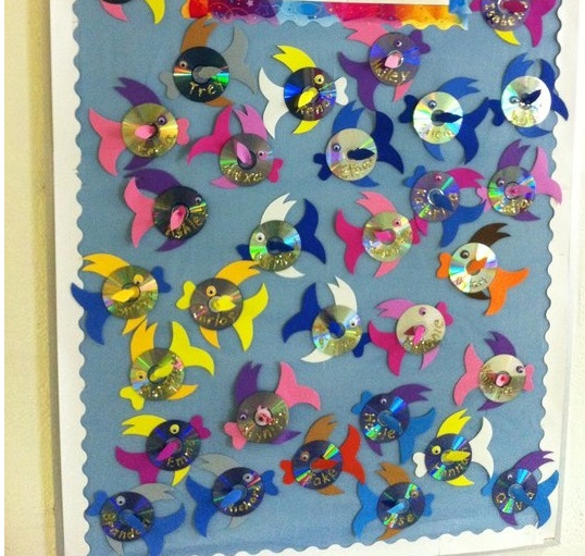 cd-fish-bulletin-board