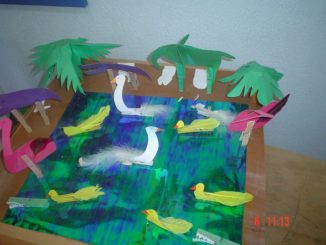 duck bulletin board idea
