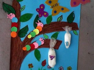 life-of-cycle-butterfly-craft-idea-for-preschooler (2)