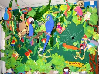rainforest-bulletin-board-idea-for-kids