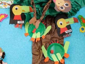 rainforest-bulletin-board-idea-for-preschoolers
