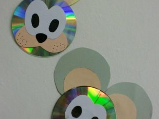 cd-mouse-craft-idea