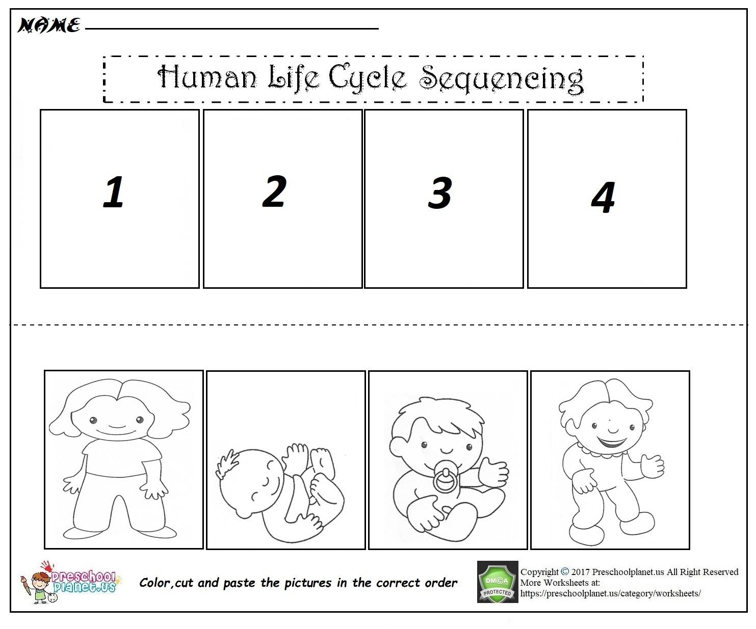 Human Life Cycle Sequencing Worksheet on Printable Preschool Worksheets Cut And Paste Clothes