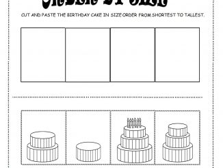 order by size worksheet for kids