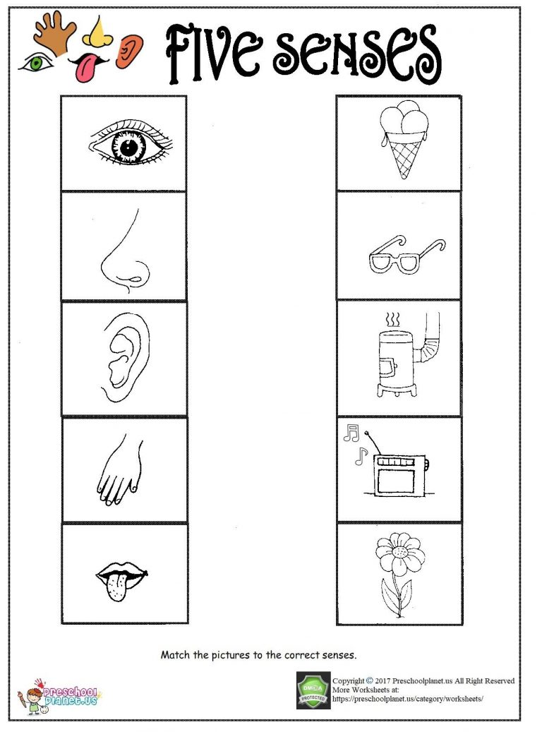 Printable five senses worksheet