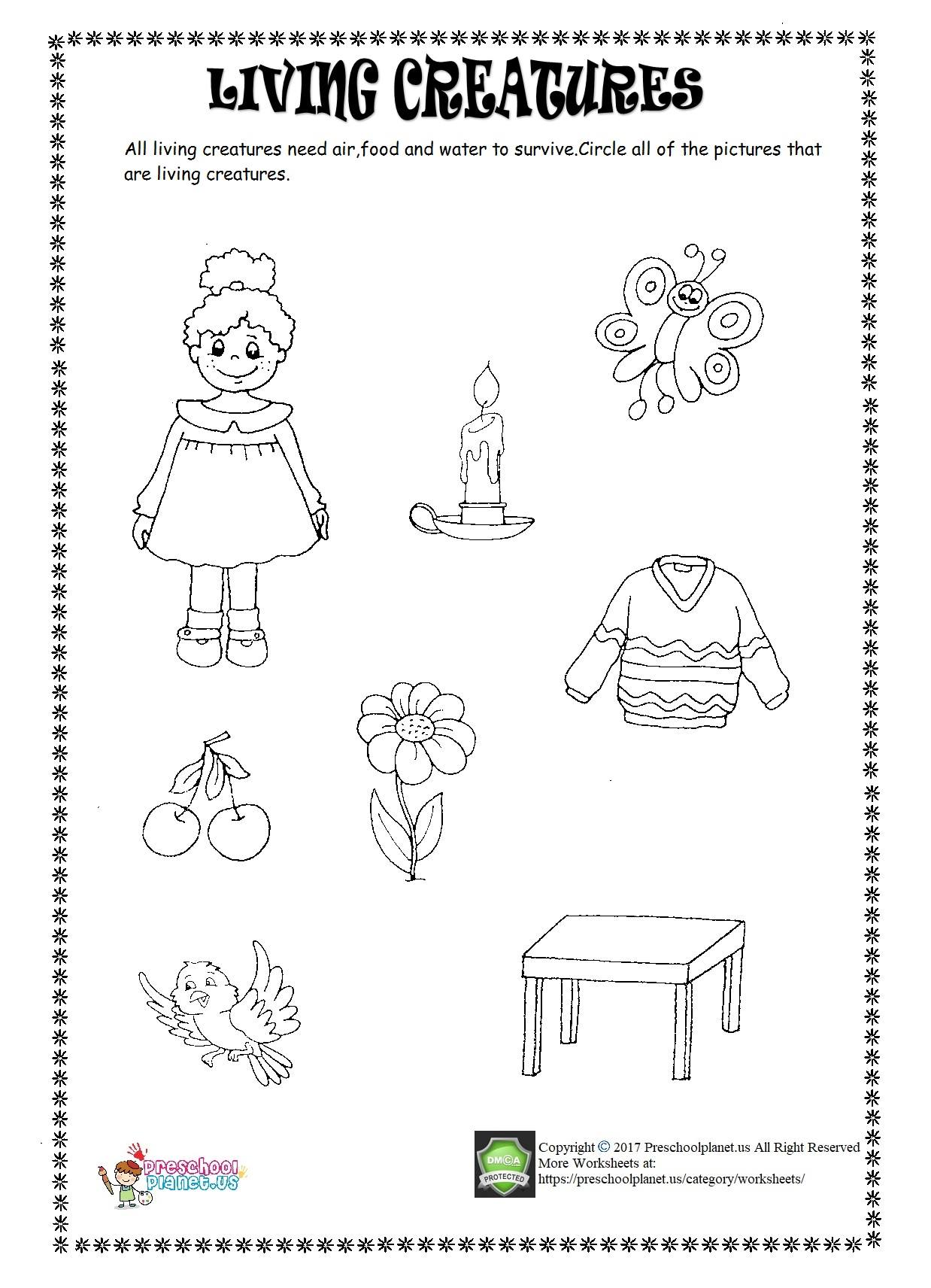 living creatures worksheet