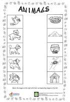 animal worksheet for kids