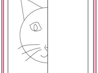 cat symmetry worksheet
