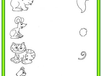 animal tails matching worksheet