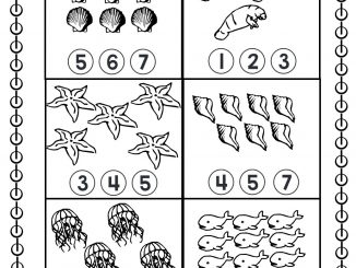 sea animal counting worksheet