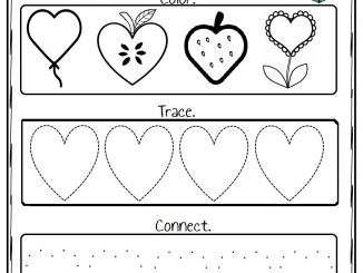 Heart Worksheet