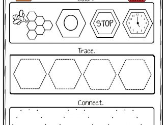 Hexagon Worksheet